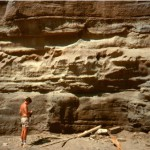 Seacliff at Bargine Bay where stratigraphic section II was measured. Stratigraphic units are essentially the same as those in photo 12.