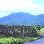 8. Mt. Liamugia
