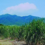 9. Mt. Liamugia